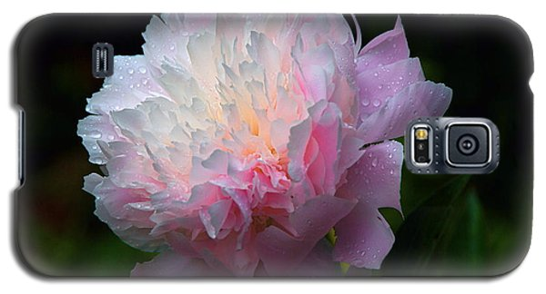 Rain-kissed Peony Galaxy S5 Case by Byron Varvarigos