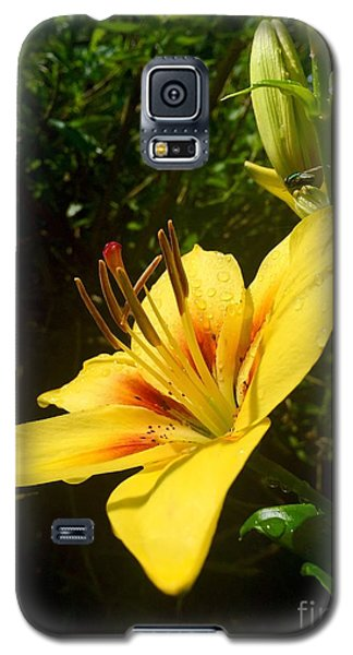 Rain Kissed Tiger Lily Galaxy S5 Case