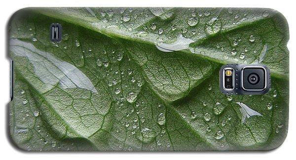 Rain Splashed Snow On The Mountain Galaxy S5 Case