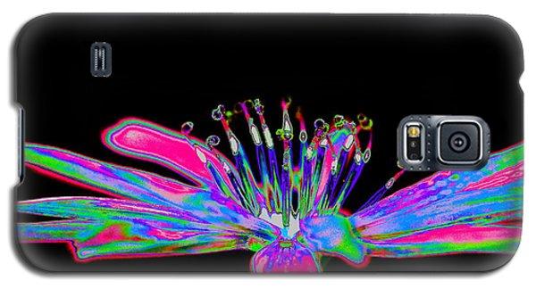 Rainbow Chicory Galaxy S5 Case by Richard Patmore