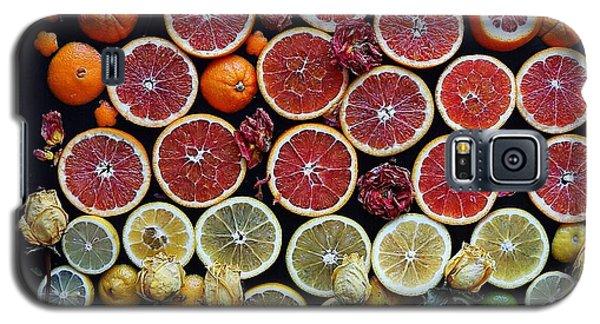 Rainbow Citrus Etc Galaxy S5 Case