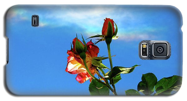 Rainbow Cloud And Sunlit Roses Galaxy S5 Case by CML Brown