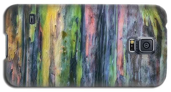 Galaxy S5 Case featuring the photograph Rainbow Forest by Ryan Manuel