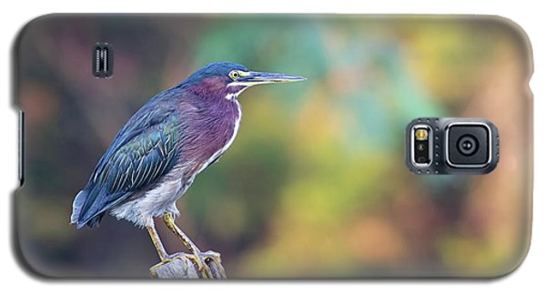 Rainbow Heron Galaxy S5 Case