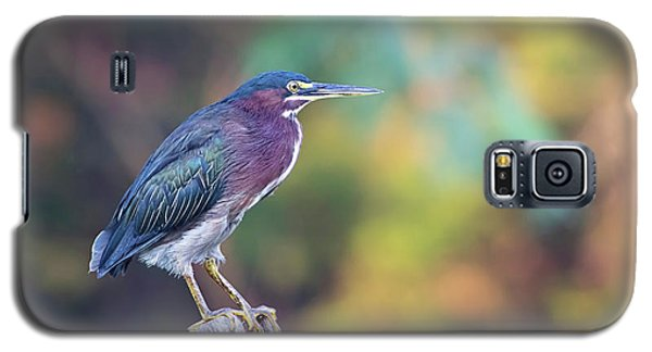 Rainbow Heron Galaxy S5 Case