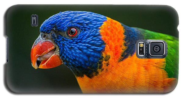 Rainbow Lorikeet Galaxy S5 Case