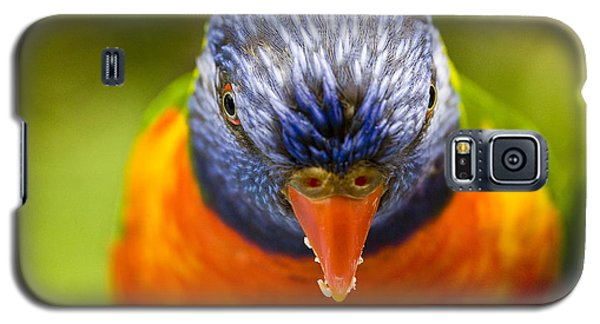 Parrot Galaxy S5 Case - Rainbow Lorikeet by Sheila Smart Fine Art Photography