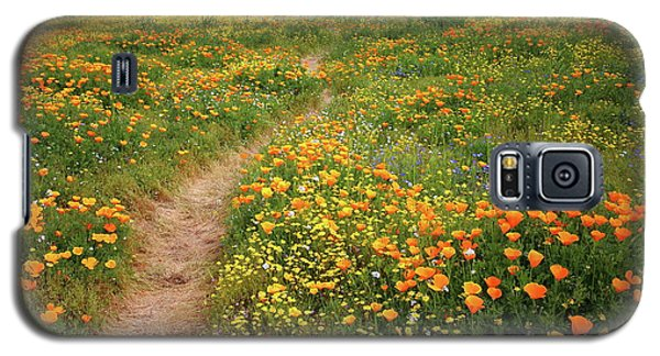 Rainbow Of Wildflowers Bloom Near Diamond Lake In California Galaxy S5 Case