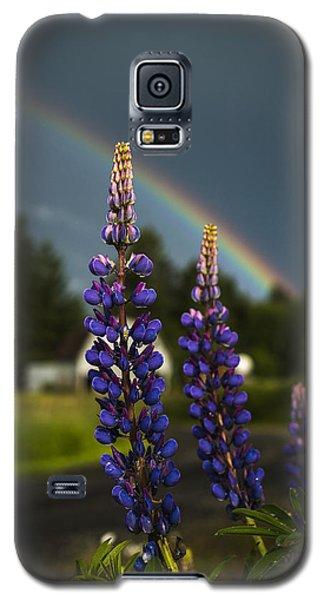 Rainbow Over Lupine  Galaxy S5 Case