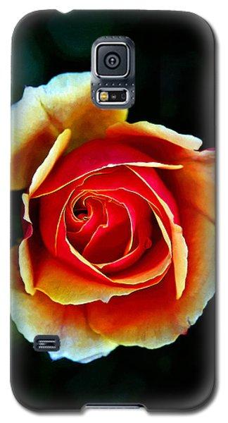 Rainbow Rose Galaxy S5 Case by John Haldane