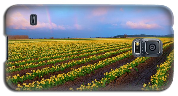 Galaxy S5 Case featuring the photograph Rainbows, Daffodils And Sunset by Mike Dawson