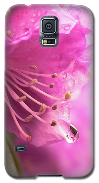 Raindrop On Rhododenron Galaxy S5 Case by Jim Hughes