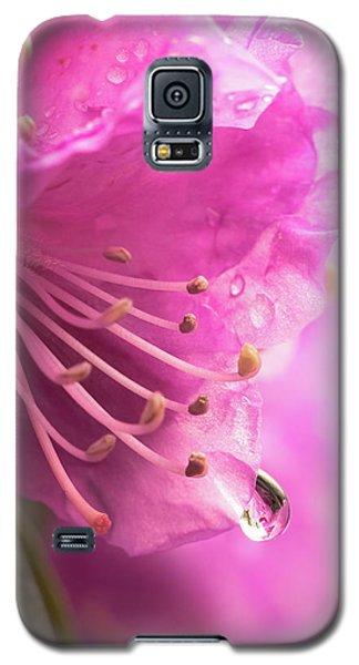 Raindrop On Rhododenron Galaxy S5 Case