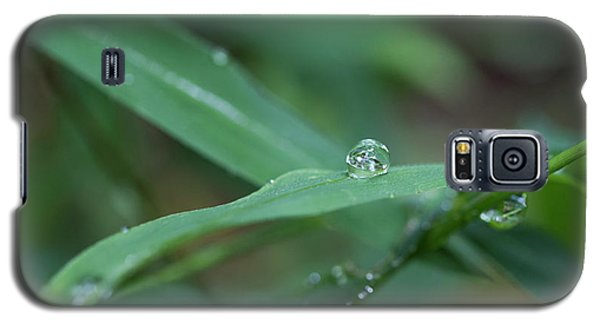 Raindrops Galaxy S5 Case
