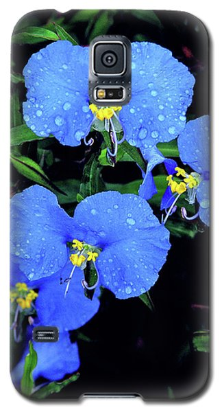 Raindrops In Blue Galaxy S5 Case