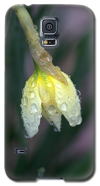Raindrops Galaxy S5 Case by Joseph Skompski