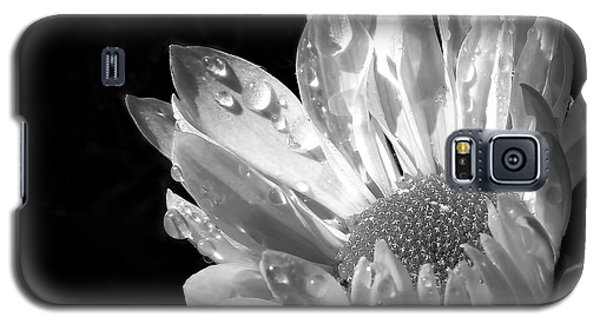 Raindrops On Daisy Black And White Galaxy S5 Case by Jennie Marie Schell