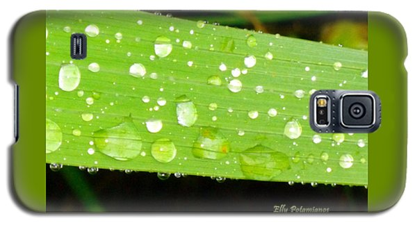 Raindrops On Leaf Galaxy S5 Case