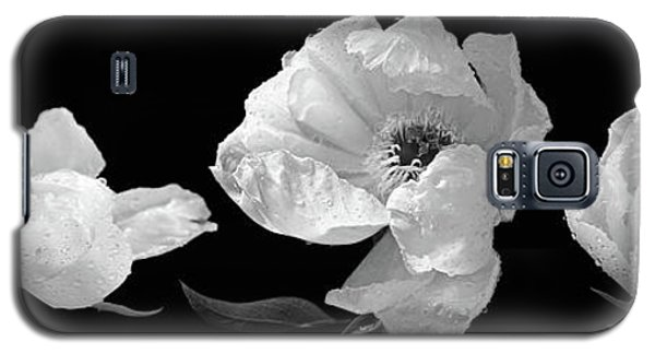 Raindrops On Peonies Black And White Panoramic Galaxy S5 Case by Gill Billington