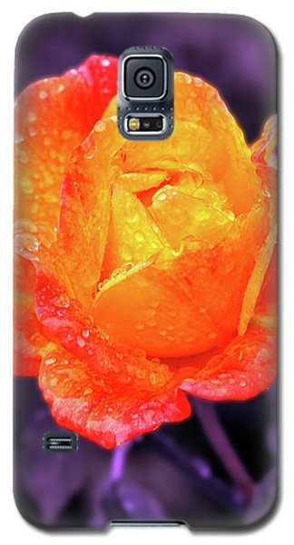 Raindrops On Roses Galaxy S5 Case