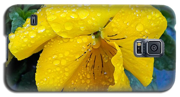 Galaxy S5 Case featuring the photograph Raindrops On Yellow Pansy by E Faithe Lester