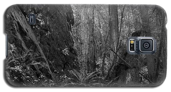 Galaxy S5 Case featuring the photograph Rainforest Black And White by Sharon Talson