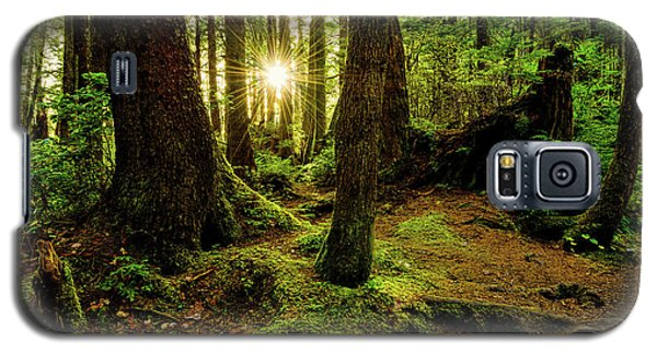 Rainforest Path Galaxy S5 Case by Chad Dutson