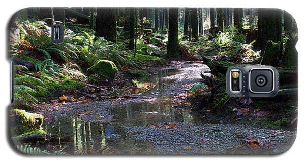 Galaxy S5 Case featuring the photograph Rainforest Trail 2 by Sharon Talson