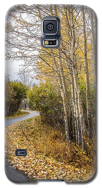 Rainy Autumn Walk Galaxy S5 Case