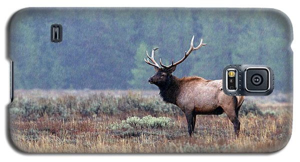 Rainy Day Elk Galaxy S5 Case
