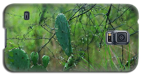Rainy Day In Central Texas Galaxy S5 Case by Travis Burgess
