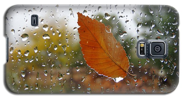 Rainy Day Visitor Galaxy S5 Case