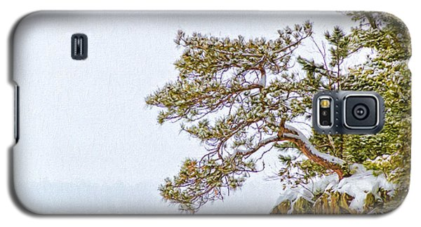 Rainy Lake Pine Galaxy S5 Case