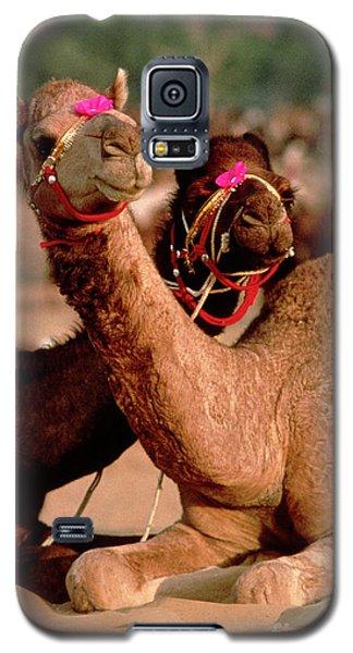 Rajasthan_21-19 Galaxy S5 Case