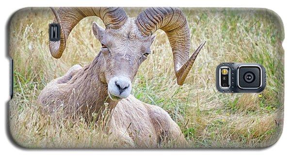Ram In Field Galaxy S5 Case