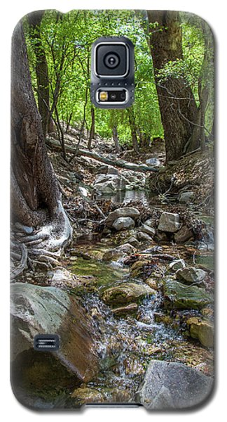 Ramsey Canyon Preserve Galaxy S5 Case