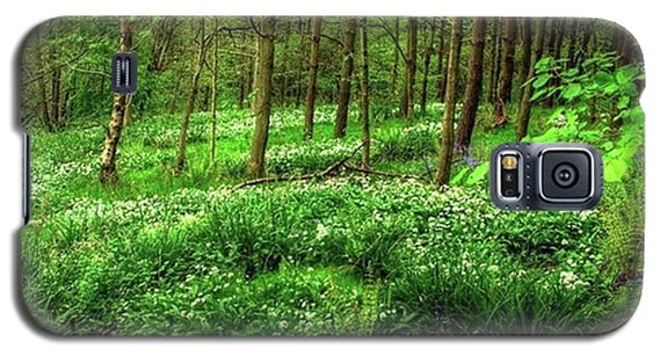 Galaxy S5 Case - Ramsons And Bluebells, Bentley Woods by John Edwards