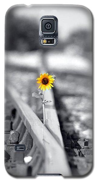 Random Galaxy S5 Case