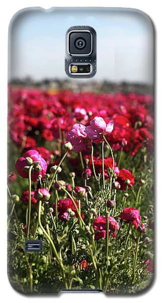Ranunculus Field Galaxy S5 Case