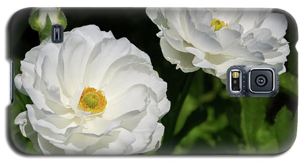 Ranunculus White Flowers Galaxy S5 Case