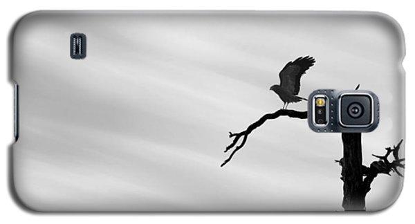 Galaxy S5 Case featuring the photograph Raptor Silhouette by Joe Bonita
