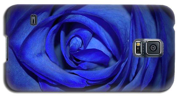 Rara Complessita Galaxy S5 Case by Diana Mary Sharpton