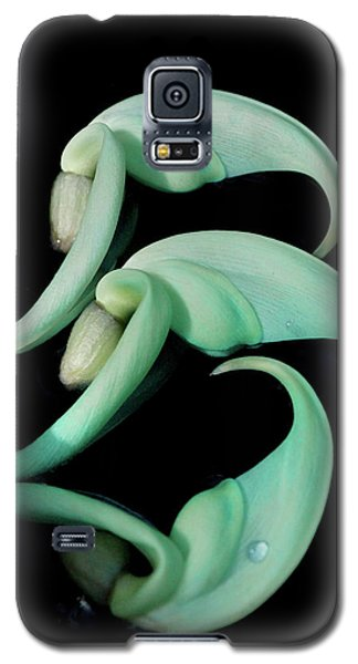 Rare Orchid Petals Galaxy S5 Case