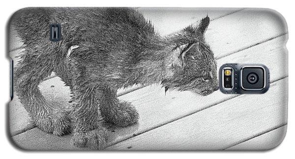 Crouching Kitty Galaxy S5 Case