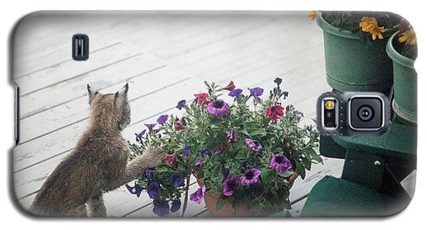 Swat The Petunias Galaxy S5 Case