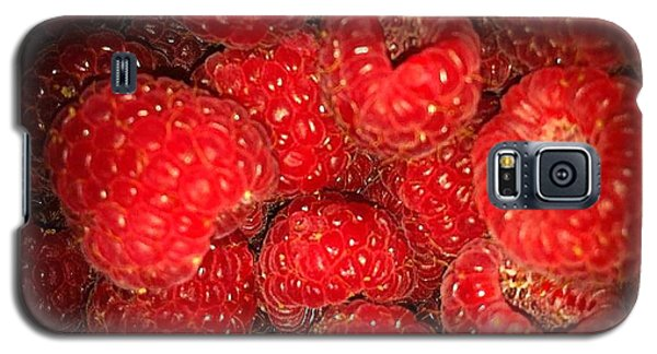 Raspberries Galaxy S5 Case by Sylvie Leandre