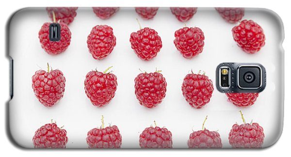 Raspberry Galaxy S5 Case