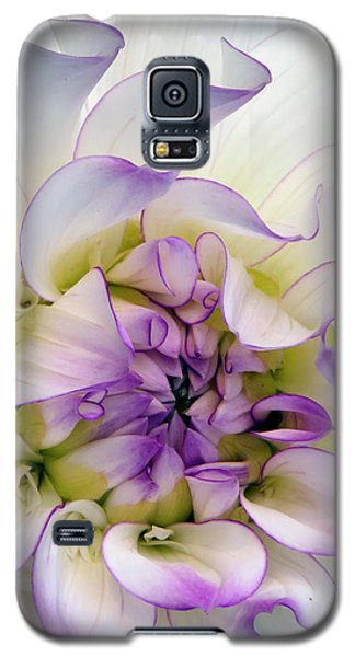 Raspberry And Cream Galaxy S5 Case