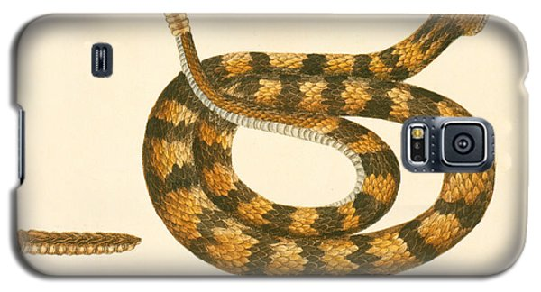 Rattlesnake Galaxy S5 Case by Mark Catesby