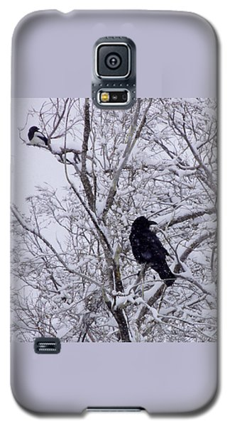 Raven And Magpie Galaxy S5 Case